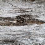 Split Wood Textures