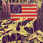 Celebrating the 4th of July!